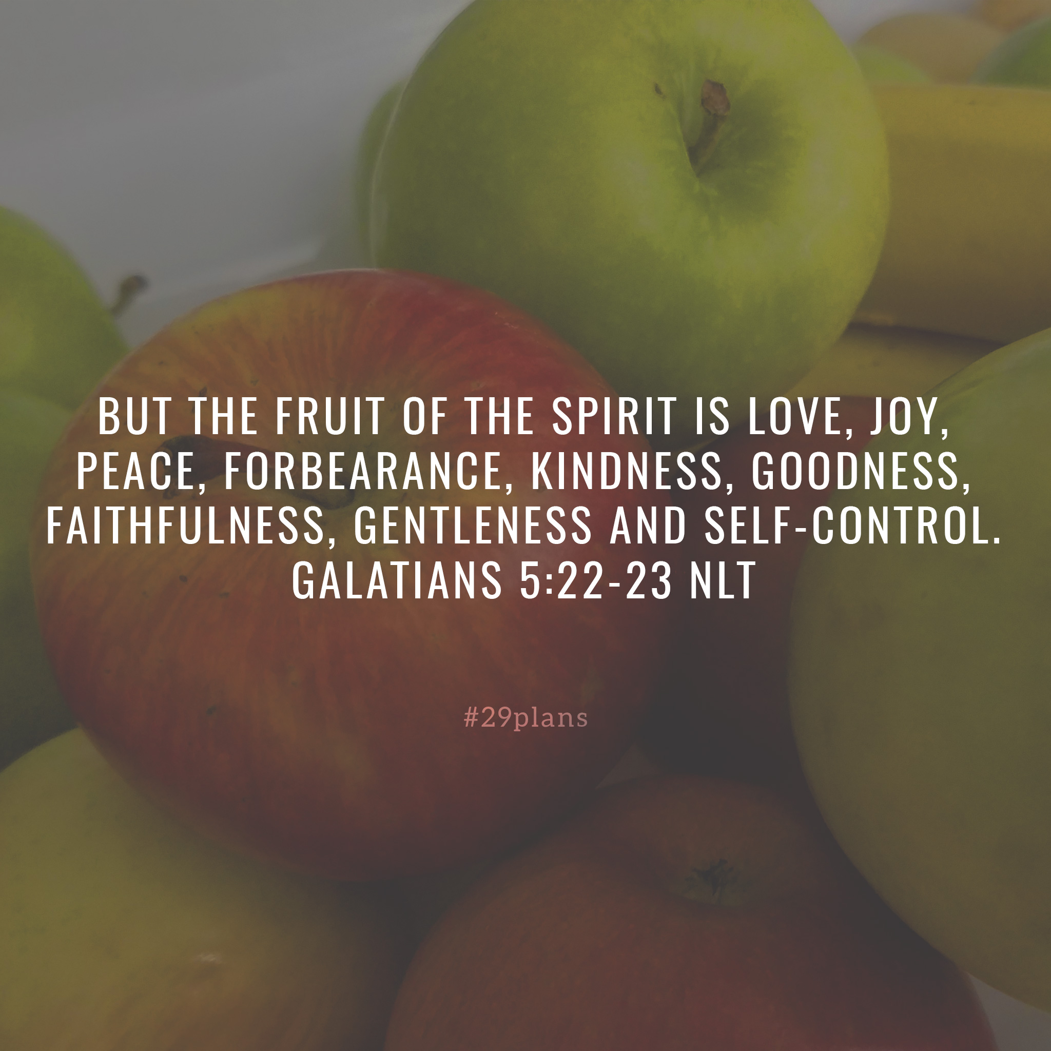 Today's Guide — 06.07.18 — Samson and the Fruits of the Spirit