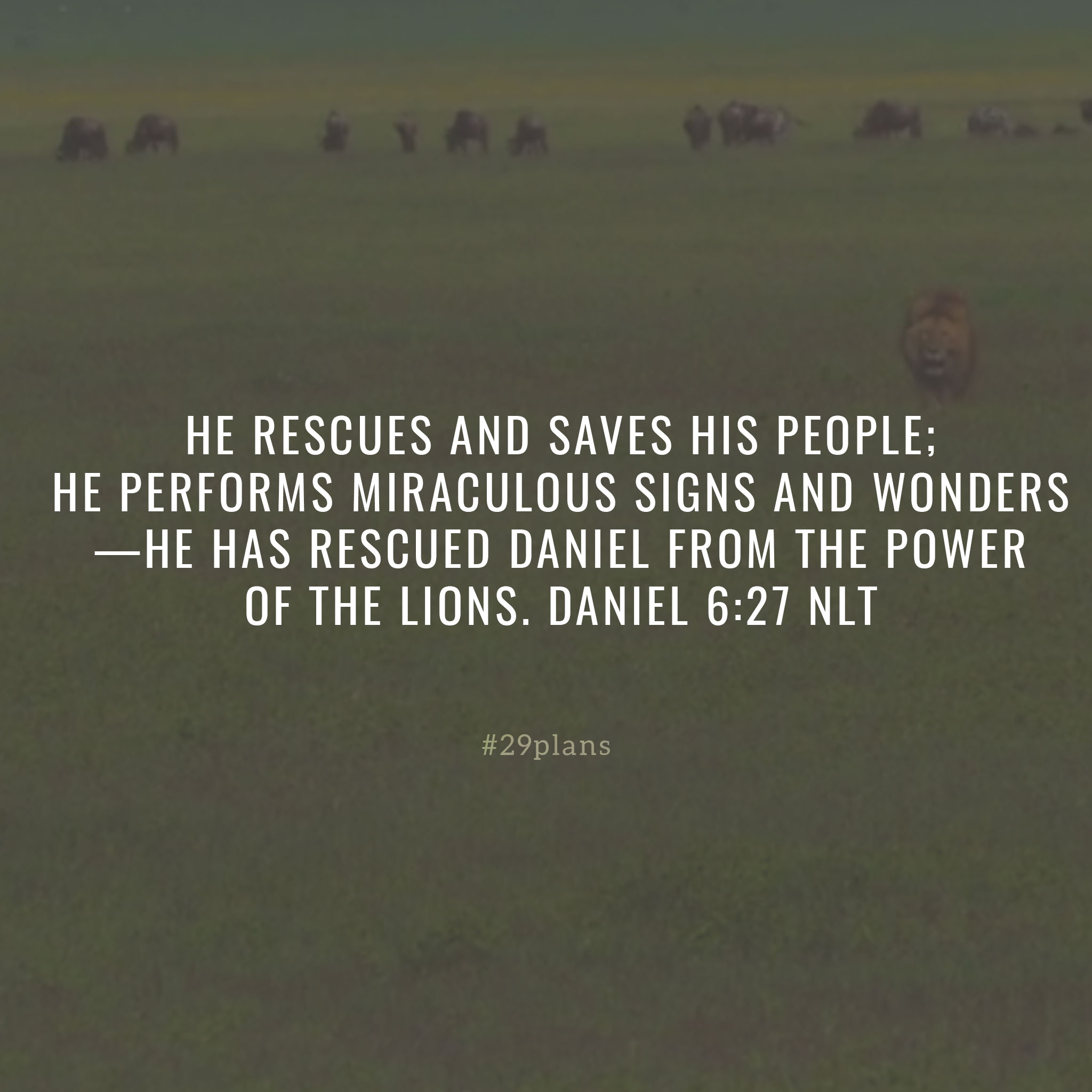 Today's Guide — 12.03.18 — Daniel in the Lion's Den
